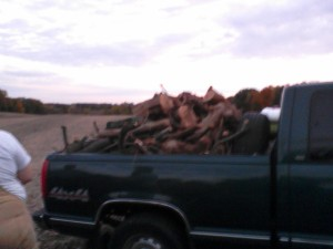 I took this picture of our truckload of wood with my phone.