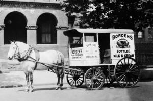 Milk Wagon Horse