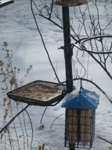 Bird feeder tray.