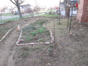 The work we did today, mowing part of the garden to make the birdfeeders and cherry trees more accessible.