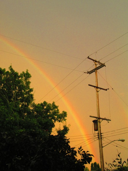 The rainbow from my house