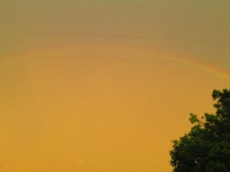 The top of the rainbow. Photo taken at my house.