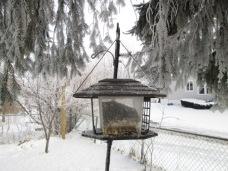 January 14, 2015 Frozen Fog 018