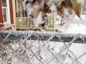 January 14, 2015 Frozen Fog 019