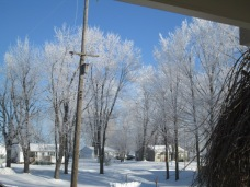 January 14, 2015 Frozen Fog 027
