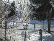 January 14, 2015 Frozen Fog 028