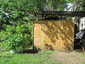 Grape Arbor/Woodshed