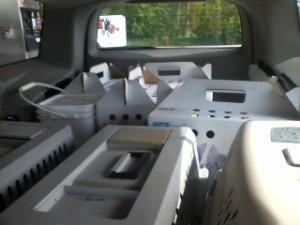 Car full of cats
