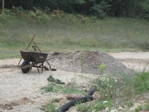Shoveling gravel