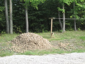 Potato stones....and potatoes