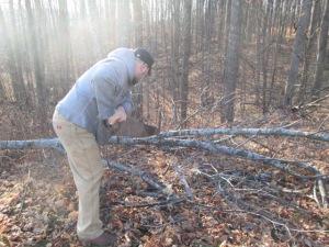 EJ cutting a branch for a chanukiah