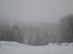 A fog of snow.