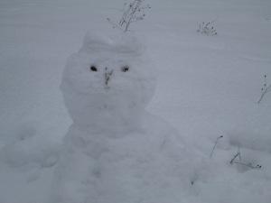 A Cat Snowman