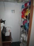 My new yarn shelves in the craft closet. And Timmy.