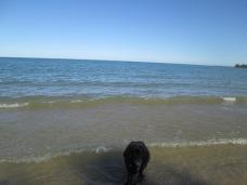 Danny swam in Lake Huron.