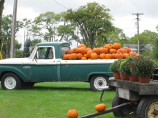 Pumpkins in an old truck