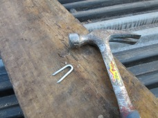 These are the big staples used to attach the fence to the posts