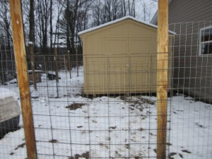 """This is the main gate into the poultry """"compound."""" I used 3 different sized fencing."""