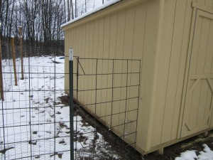 This is the fence/gate I built to separate the duck and chicken pens.