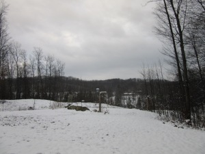 We got several inches of snow yesterday. It warmed up a little today so it melted a little. This photo is from today.