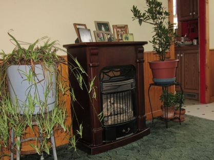The propane fireplace