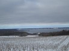 Winery at Mission Peninsula