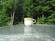 TJ enjoying her morning coffee