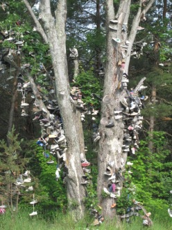 Shoe Tree, Kalkaska