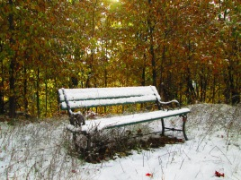 Oct. 17, 2015 Snow 006