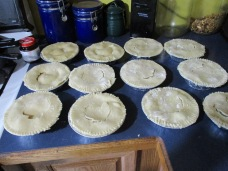 13 little turkey potpies