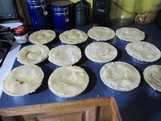 13 little turkey potpies